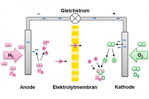 Schema der Elektrolyse mittels Gleichstrom und Elektrolytmembran